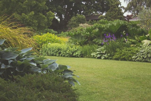 Was hilft gegen Ungeziefer im Garten